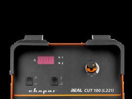 REAL CUT 100 (L221)
